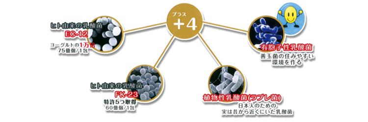 4つのプレミアム乳酸菌